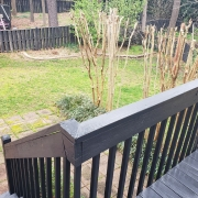 201-stone-hedge-backyard