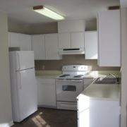 2318_huntsbridge_kitchen